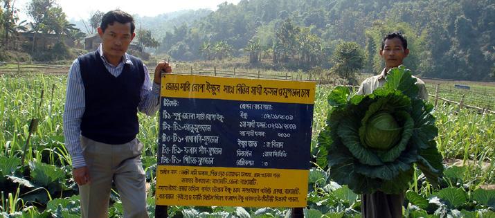 রাঙ্গামাটি এলাকায় ইক্ষু চাষ